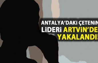 Antalya'daki çetenin lideri Artvin'de yakalandı