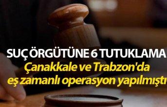Suç örgütüne 6 tutuklama - Çanakkale ve Trabzon'da operasyon yapılmıştı
