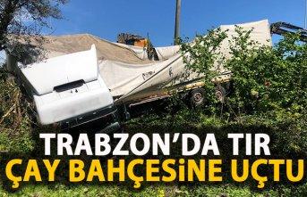 Trabzon'da tır çay bahçesine uçtu!