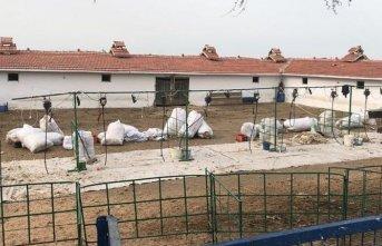 Koyun kırkma sırasında 11 işçi akıma kapıldı: 1 ölü!