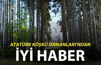 Trabzon'da Atatürk Köşkü Ormanları'ndan...