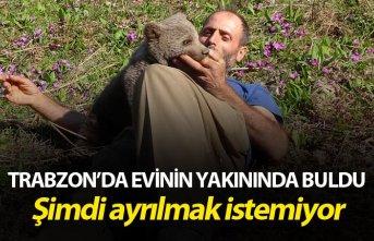 Trabzonlu'dan örnek davranış - Evinin yakınında...