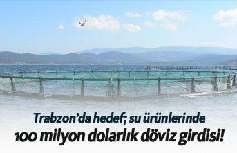 Trabzon'da hedef su ürünlerinde 100 milyon...