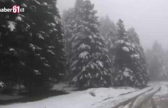 Bolu'nun yüksek kesimlerinde kar yağışı etkili oluyor!