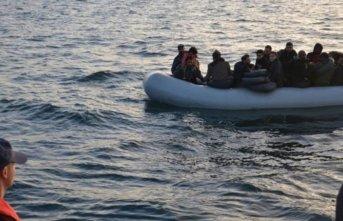 14'ü çocuk 47 kaçak göçmen yakalandı