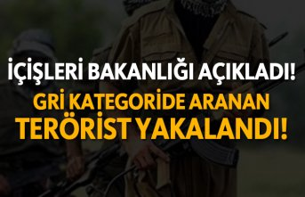 Gri kategoride aranan terörist yakalandı!