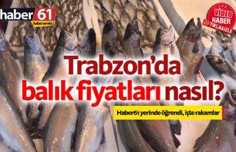 Trabzon'da balık fiyatları nasıl?