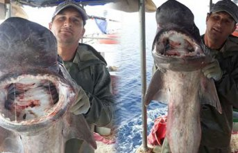 Yakaladığı balığın türünü öğrenince...