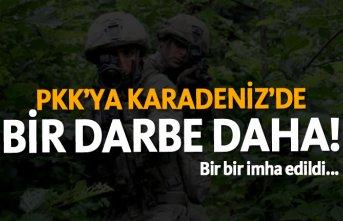 PKK'ya Karadeniz'de bir darbe daha! Bir...
