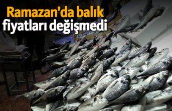 Ramazan'da balık fiyatları değişmedi!