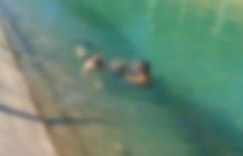 Sulama kanalına düşen iki kişi öldü!
