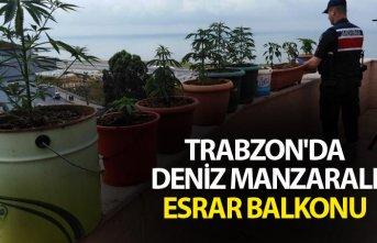 Trabzon'da deniz manzaralı esrar balkonu