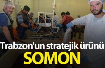 Trabzon'un stratejik ürünü: Somon