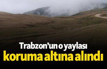 Trabzon'un o yaylası koruma altına alındı