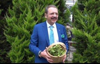 """Hisarcıklıoğlu da """"Dünyanın Fındığı Burada""""..."""