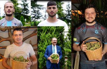 Ünlülerden Trabzon'daki fındık hasadına davet