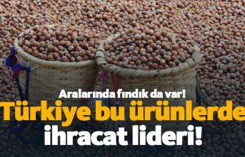 Türkiye bu ürünlerde ihracat lideri!
