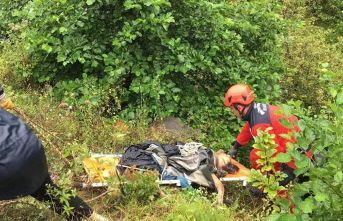 Uçuruma düşen köpeği itfaiye kurtardı