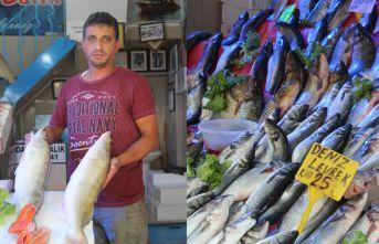 Samsunlu balıkçılar yeni sezondan umutlu