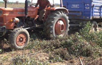 Giresun'da traktör devrildi! Yaralılar var!