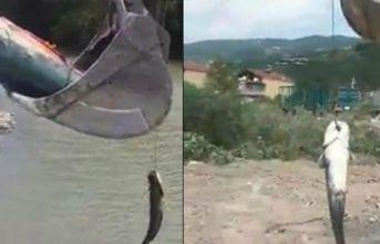 İlginç görüntü! Tuttuğu balığı...