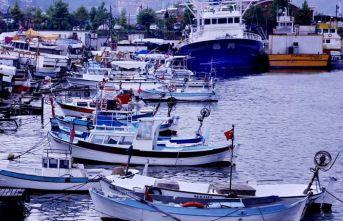 """""""Karadeniz alarm veriyor, balık sezonu Kasım'da kapanabilir"""""""