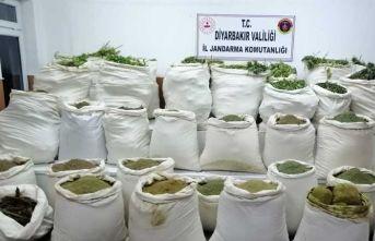 PKK'nın finans kaynağına darbe: 1 ton esrar,...