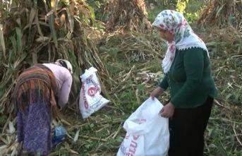 Trabzon'da kadınların kış hazırlıkları başladı
