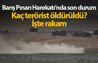 Barış Pınarı Harekatı'nda 6. gün, kaç terörist öldürüldü?