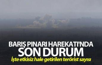 Barış Pınarı Harekatı'nda etkisiz hale getirilen terörist sayısı belli oldu