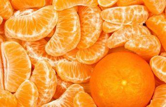 Doğu Karadeniz en çok mandarin ihraç etti