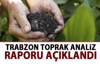 Trabzon toprak analiz raporu açıklandı