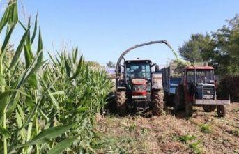 Çiftçilere destek ödemeleri sürüyor