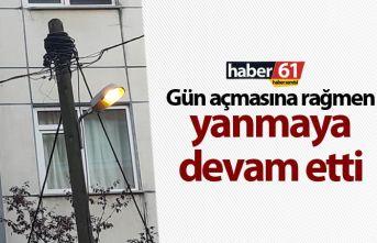 Trabzon'da gündüz yanan sokak lambası dikkat...