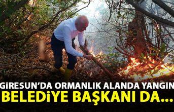 Giresun'da ormanlık alanda yangın!