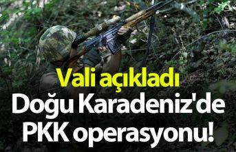 Doğu Karadeniz'de PKK operasyonu! Vali açıkladı