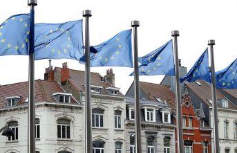 AB'nin yeni kör düğümü: Avrupalı DEAŞ'lılar