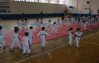 'Minikler Taekwondo Turnuvası' düzenlendi