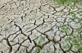 İklim değişikliği 21'inci yüzyılda en büyük sağlık tehdidi olabilir