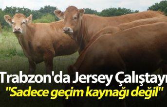 """Trabzon'da Jersey Çalıştayı - """"Sadece..."""