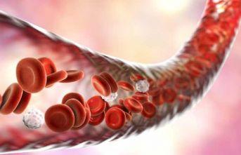 Buerger'de uzuv kurtaran yeni tedavi: Hibrit yöntemler