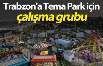 Trabzon'a Tema Park için çalışma grubu