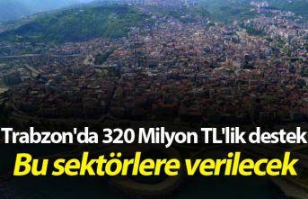 Trabzon'da 320 Milyon TL'lik destek - Bu sektörlere verilecek