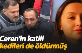 Ceren Özdemir'in katili kedileri de öldürmüş