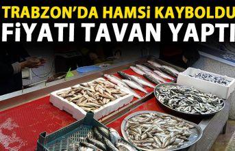 Trabzon'da hamsi kayıplara karıştı