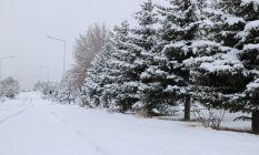 Sivas beyaza büründü, 251 köy yolu araç ulaşımına kapalı