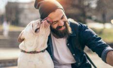Erkeklerin sakallarında köpeklerden daha fazla mikrop...