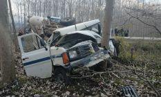 Odun yüklü kamyonet ağaca çarptı