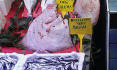 Karadeniz'de avlanan bu balığın kilosu 270...