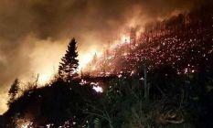 Trabzon'daki yangınlara sebep olanlar bedelini...